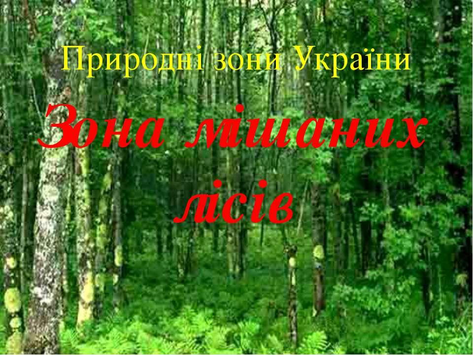 Природні зони України Зона мішаних лісів