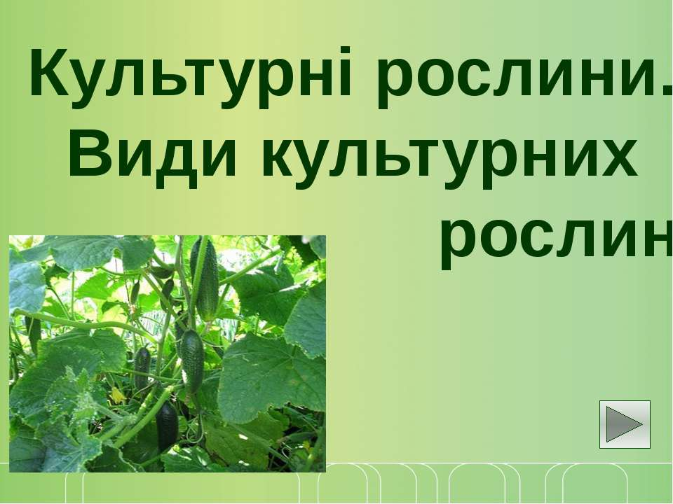Культурні рослини. Види культурних рослин