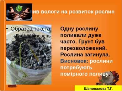 Вплив вологи на розвиток рослин Одну рослину поливали дуже часто. Грунт був п...