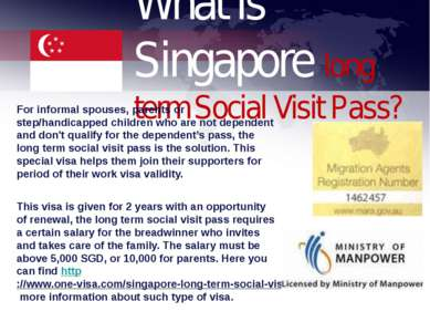 What is Singapore long term Social Visit Pass? For informal spouses, parents ...