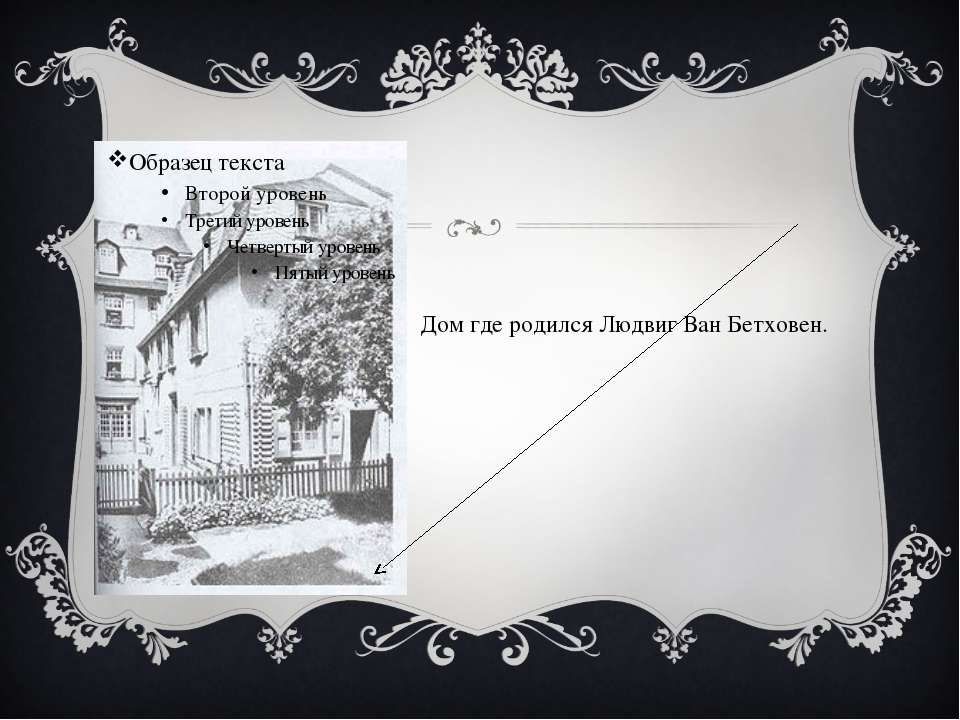 Дом где родился Людвиг Ван Бетховен.