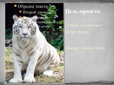 -Узнать где обитают белые тигры. -Факты о белом тигре. Цель проекта.