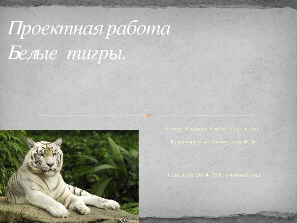 Автор :Евплова Ольга 2»Б» класс Руководитель: Самаркина И. В. Сенгилей 2014-2...