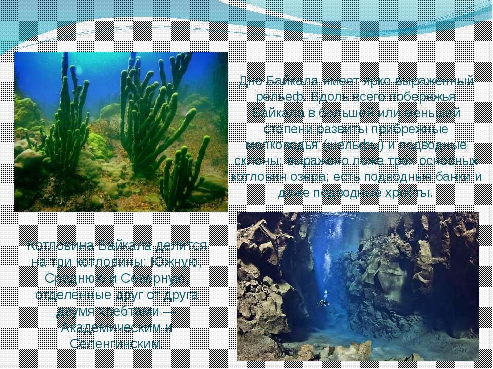 Дно Байкала имеет ярко выраженный рельеф. Вдоль всего побережья Байкала в бол...