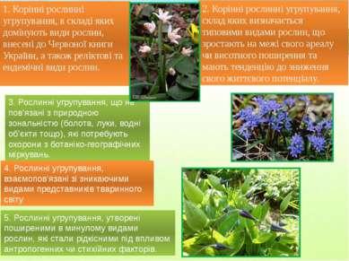 1. Корінні рослинні угрупування, в складі яких домінують види рослин, внесені...