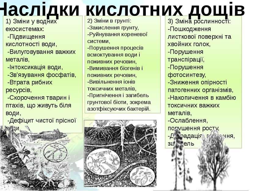 1) Зміни у водних екосистемах: -Підвищення кислотності води, -Вилуговування...
