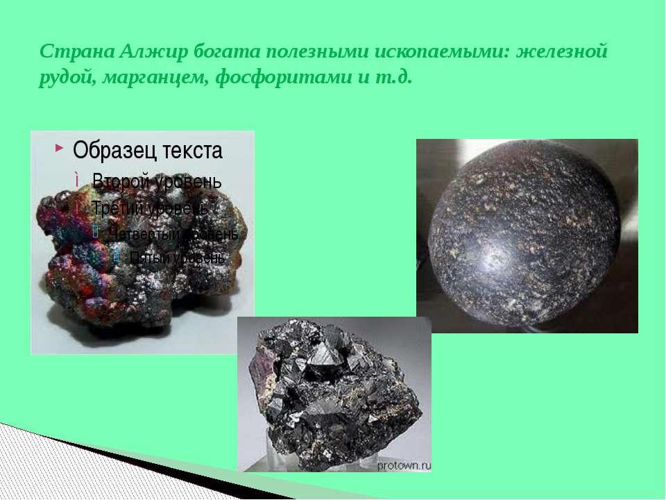 Страна Алжир богата полезными ископаемыми: железной рудой, марганцем, фосфори...