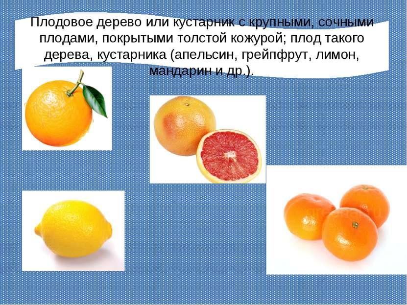 Плодовое дерево или кустарник с крупными, сочными плодами, покрытыми толстой ...