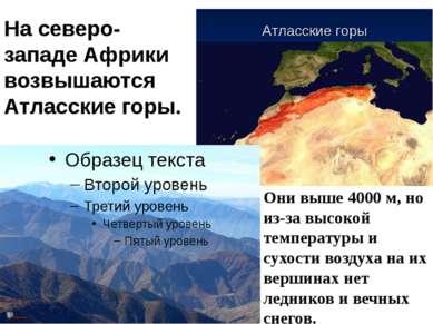 На северо-западе Африки возвышаются Атласские горы. Они выше 4000 м, но из-за...