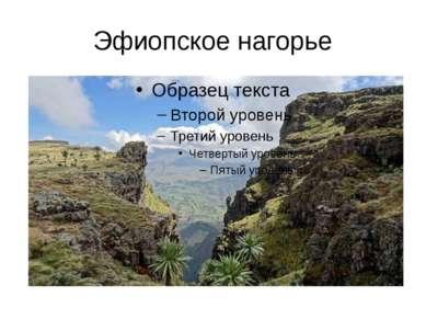 Эфиопское нагорье