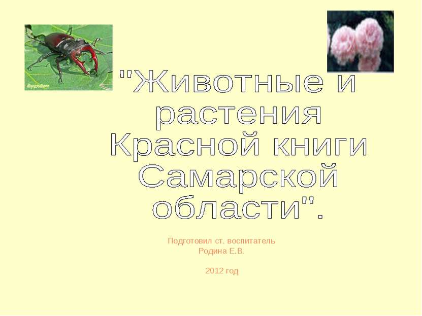 Подготовил ст. воспитатель Родина Е.В. 2012 год