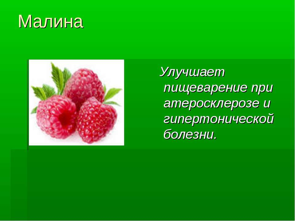 Малина Улучшает пищеварение при атеросклерозе и гипертонической болезни.
