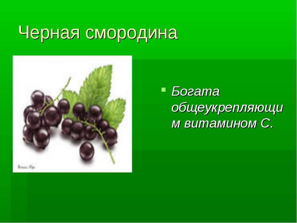 Черная смородина Богата общеукрепляющим витамином С.