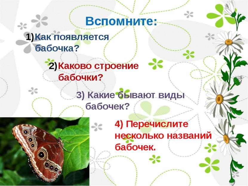 Вспомните: Каково строение бабочки? Как появляется бабочка? 3) Какие бывают в...