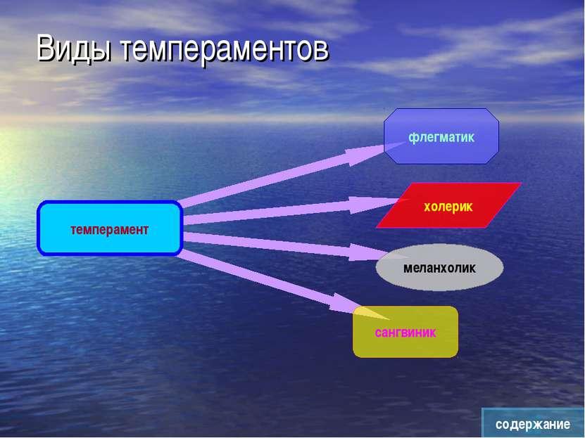 Виды темпераментов содержание темперамент флегматик меланхолик холерик сангвиник