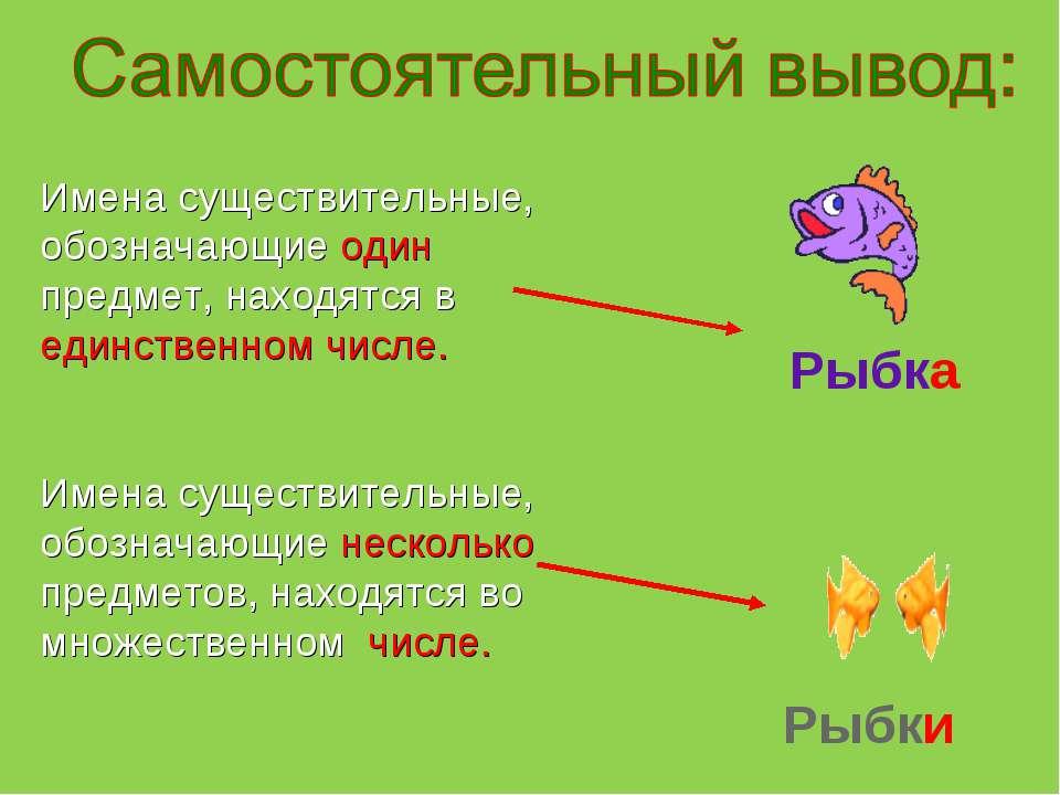 Имена существительные, обозначающие один предмет, находятся в единственном чи...