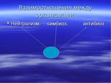 Взаимоотношения между организмами. Нейтрализм, симбиоз, антибиоз