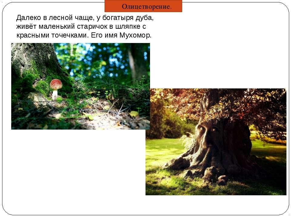 Далеко в лесной чаще, у богатыря дуба, живёт маленький старичок в шляпке с кр...