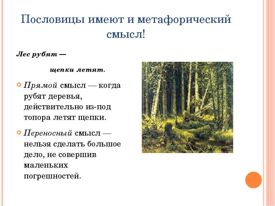 Пословицы имеют и метафорический смысл! Лес рубят— щепки летят. Прямой смысл...