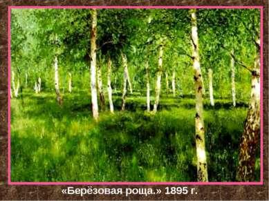 «Берёзовая роща.» 1895 г.