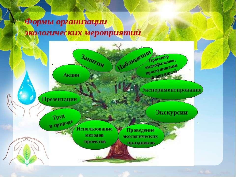 Использование методов проектов Презентации Акции Занятия Труд в природе Просм...
