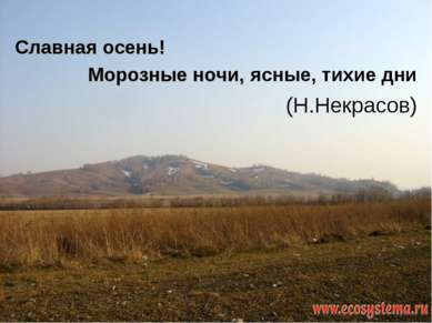 Морозные ночи, ясные, тихие дни (Н.Некрасов) Славная осень!