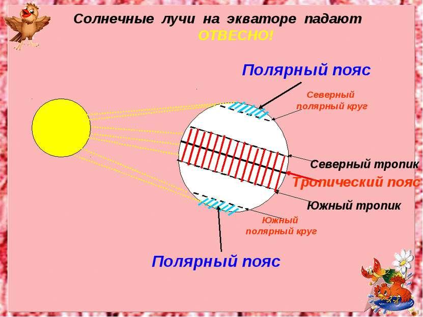 Полярный пояс Полярный пояс Южный полярный круг Северный полярный круг Солнеч...