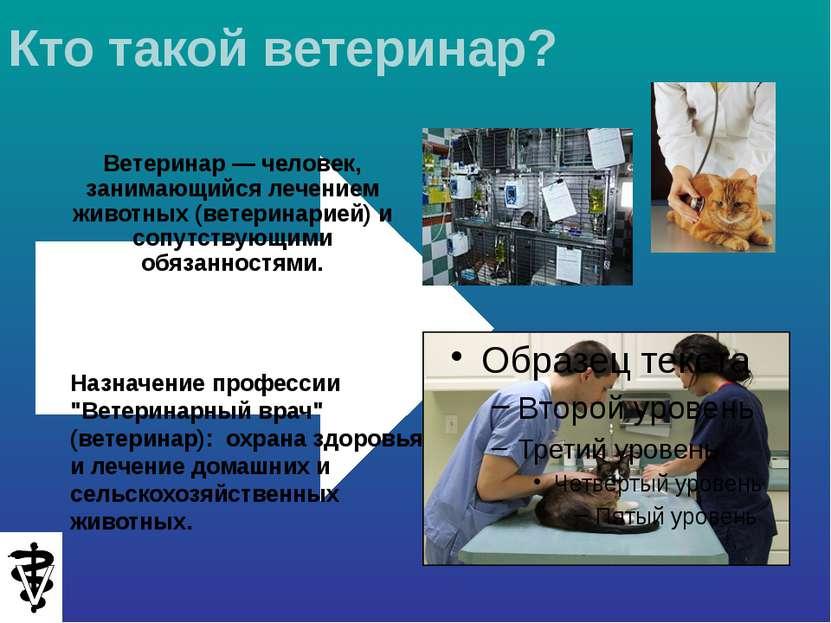 """Назначение профессии """"Ветеринарный врач"""" (ветеринар): охрана здоровья и лечен..."""