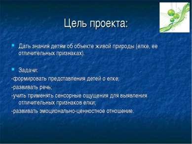 Цель проекта: Дать знания детям об объекте живой природы (елке, ее отличитель...