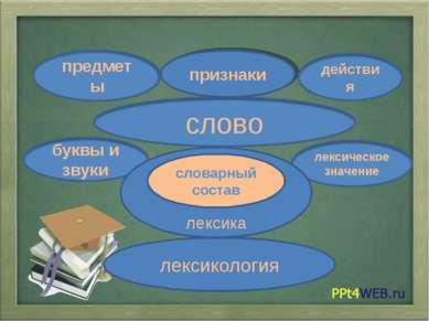 признаки лексика лексикология словарный состав