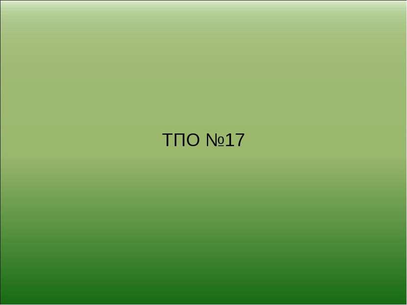 ТПО №17
