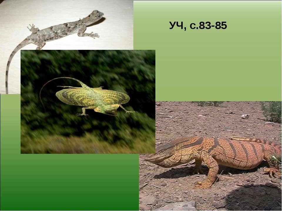 УЧ, с.83-85