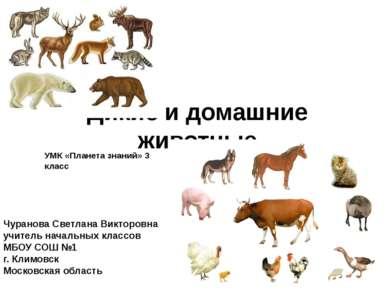 Дикие и домашние животные УМК «Планета знаний» 3 класс Чуранова Светлана Викт...