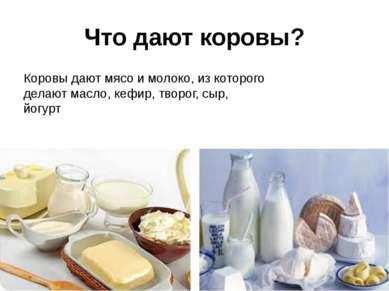 Что дают коровы? Коровы дают мясо и молоко, из которого делают масло, кефир, ...