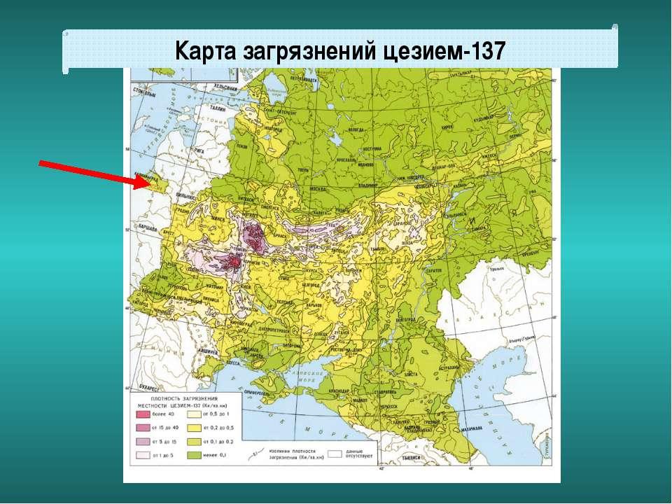 Карта загрязнений цезием-137