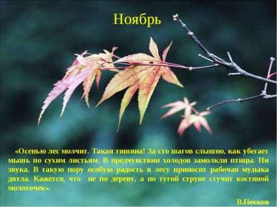 Ноябрь «Осенью лес молчит. Такая тишина! За сто шагов слышно, как убегает мыш...