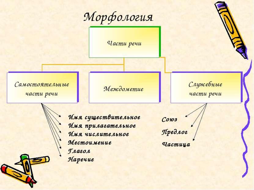 Морфология Союз Предлог Частица Имя существительное Имя прилагательное Имя чи...