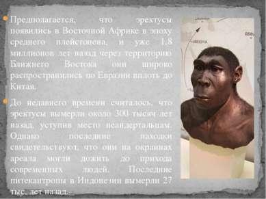 Предполагается, что эректусы появились в Восточной Африке в эпоху среднего пл...