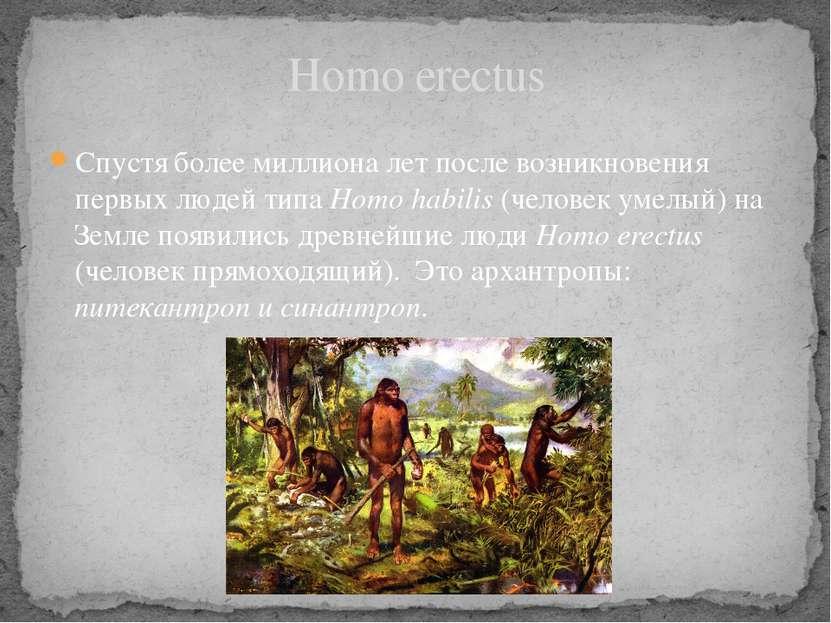 Homo erectus Спустя более миллиона лет после возникновения первых людей типа ...