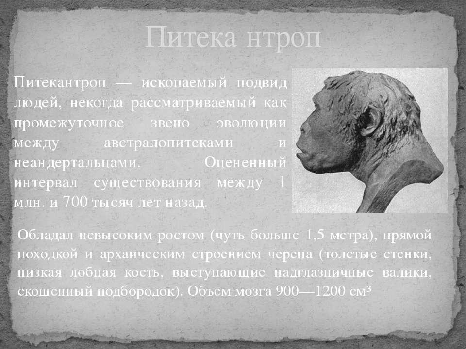 Питекантроп — ископаемый подвид людей, некогда рассматриваемый как промежуточ...
