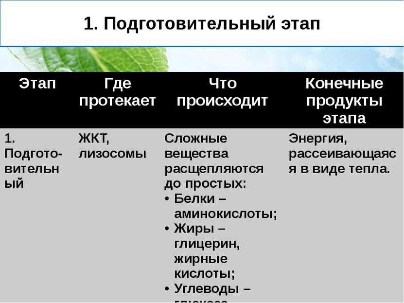 1. Подготовительный этап Этап Где протекает Чтопроисходит Конечныепродукты эт...