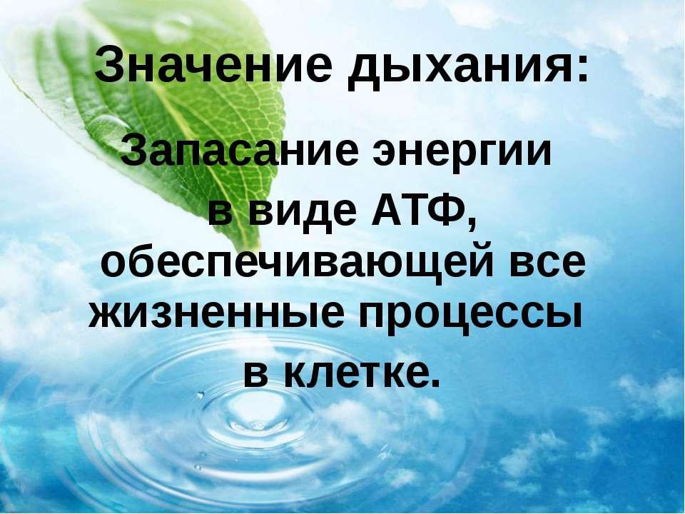 Значение дыхания: Запасание энергии в виде АТФ, обеспечивающей все жизненные ...