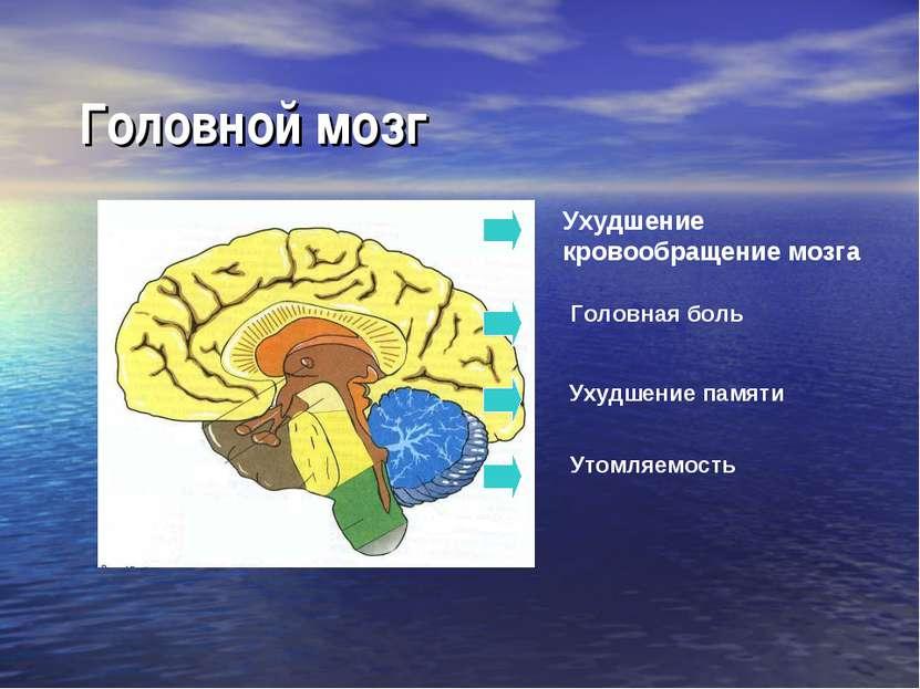Головной мозг Ухудшение кровообращение мозга Головная боль Ухудшение памяти У...