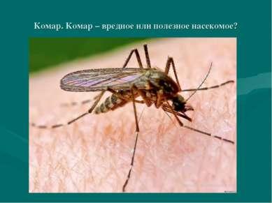 Комар. Комар – вредное или полезное насекомое?
