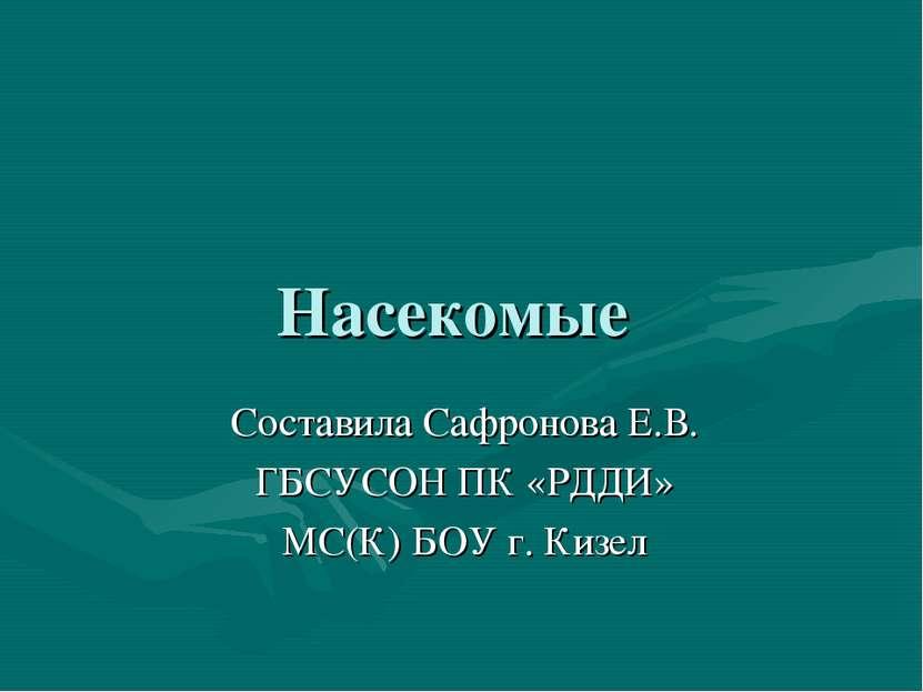 Насекомые Составила Сафронова Е.В. ГБСУСОН ПК «РДДИ» МС(К) БОУ г. Кизел