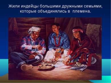Жили индейцы большими дружными семьями, которые объединялись в племена.
