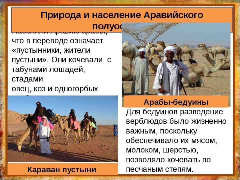 Населяли Аравию арабы, что в переводе означает «пустынники, жители пустыни». ...