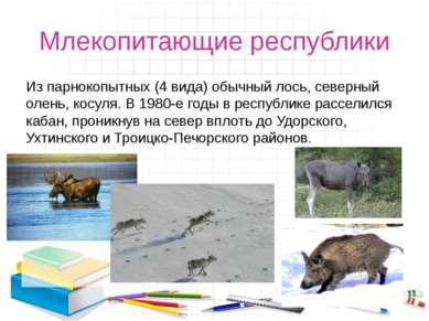 Млекопитающие республики Из парнокопытных (4 вида) обычный лось, северный оле...