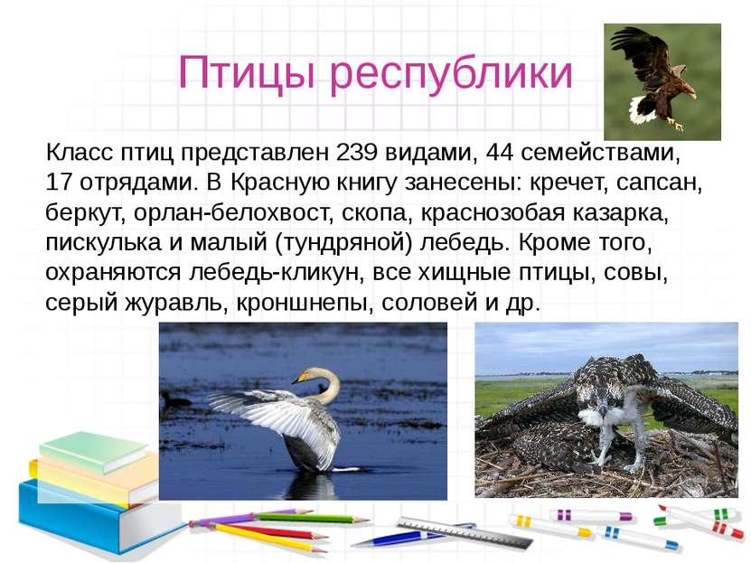 Птицы республики Класс птиц представлен 239 видами, 44 семействами, 17 отряда...