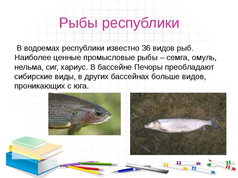 Рыбы республики В водоемах республики известно 36 видов рыб. Наиболее ценные...